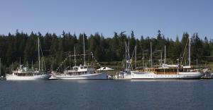 Thea Foss, Malibu, Olympus together